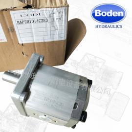BAP2B1D25C2E3 BAP2B1D26.5C2E3齿轮泵油泵BODEN