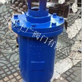 SCAR铸铁污水复合式排气阀