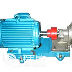 KCB/2CY型�X��油泵高�糊X�泵/防爆�X�油泵/可配�~�~�