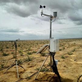 BRM1000型 波文比通量监测系统 / 波文比监测系统