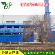 工业废气喷漆车间rco活性炭成套催化燃烧voc有机废气处理设备