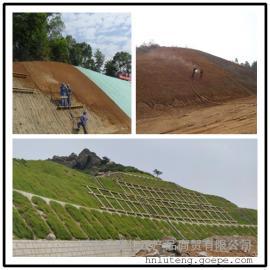 道路护坡绿化喷播专用A30土壤粘合剂