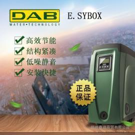 意大利进口变频水泵家用DAB戴博恒压自动增压泵自吸抽水泵静音