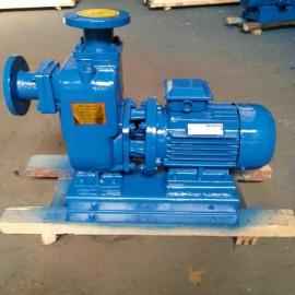 ZWL防爆直联式自吸泵 不锈钢耐腐蚀直联式排污自吸泵供应商