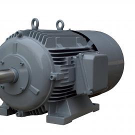 中国区代理德国winkelman防爆直流电机选型d-GNFZE 2220/4/7.5kW