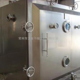 专业定制芒果专用烘干机 芒果片真空干燥箱