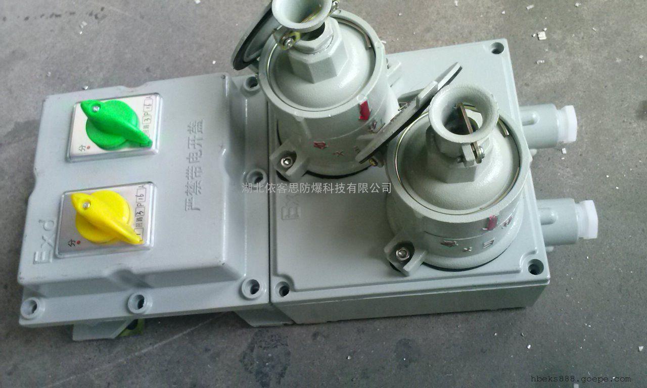 BCX52-4/10A防爆检修电源插座箱/带总开关_过载_断路保护