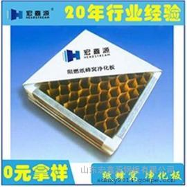 玻镁岩棉净化板厂家、玻镁岩棉净化板、山东宏鑫源(多图)