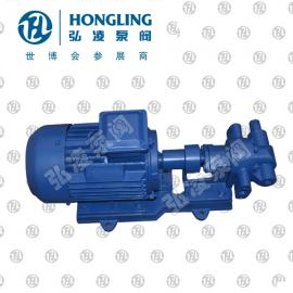 2CY�X�油泵