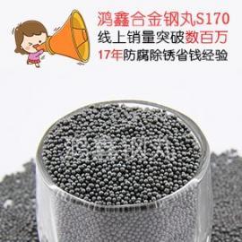鸿鑫钢丸专业生产 国标钢丸 不锈钢钢丸 特惠中