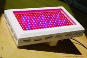 100瓦LED植物灯