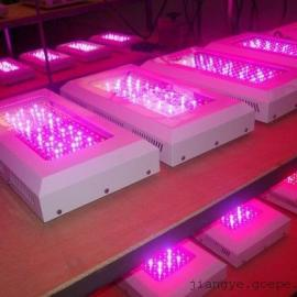 50瓦大棚LED植物灯