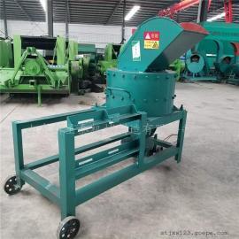 供应全国多功能打浆机生产厂家/圣泰鲜草打浆机