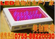 大鹏室LED植物灯生产厂家