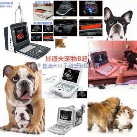 便宜宠物B超价格大概多少钱猫狗小动物B超品牌厂家