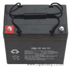 美国(LADIS)雷迪斯蓄电池官网
