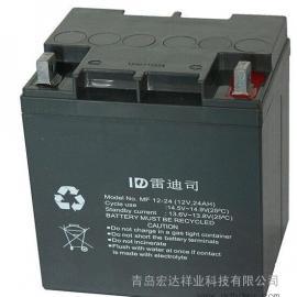 美国雷迪斯/LADIS蓄电池MF12-12 12V12AH价格美丽