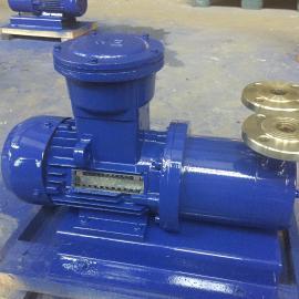 CWB25-25防爆电机型磁力旋涡泵 304不锈钢磁力旋涡泵制造商