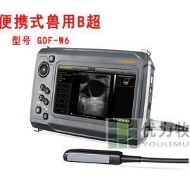 甘道夫牛用B超GDF-W6可以配视频眼镜多少钱