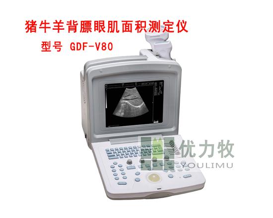 牛用活体背膘眼肌面积测定仪GDF-V80厂家报价