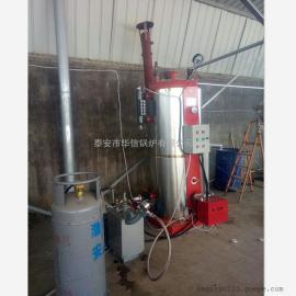 供应燃气蒸汽锅炉小型燃气立式锅炉节能环保蒸馒头豆腐小型锅炉