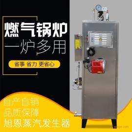 旭恩0.1吨燃气蒸汽发生器节能蒸汽锅炉