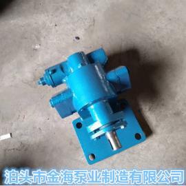 供应小流量齿轮油泵润滑油泵2CY系列齿轮泵抽油泵泊头金海泵业