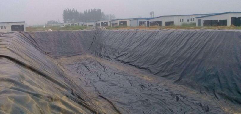 云南怒江福贡HDPE防渗土工膜-HDPE土工膜-水池防渗