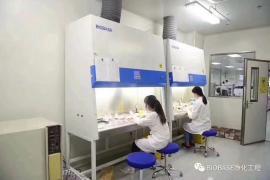 二级 BIOBASE 生物安全柜BSC-1500IIB2-X 双人全排