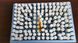 21259-15 哈希COD试剂