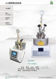 新款微型高压反应釜