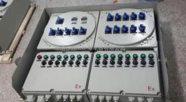 BXM51-6K防爆照明配电箱一进3P63A,六出1P16A