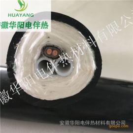 华阳生产一体化烟气取样管线/FHT-D42-B2Ф8-b