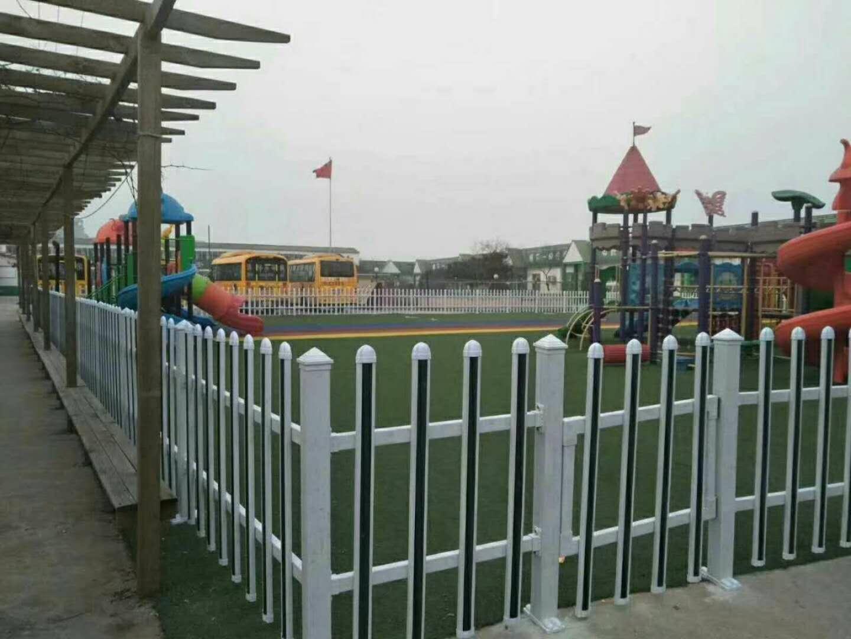 市政道路PVC防护栏 塑钢草坪护栏价格