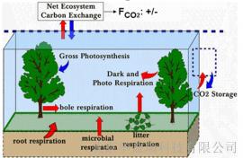 土壤剖面CO2梯度监测系统