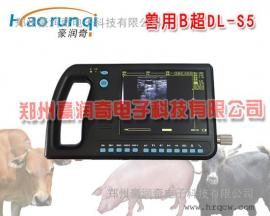 测母猪B超机,便携式B超机,5.6寸屏彩色兽用B超