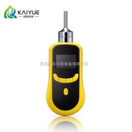 凯跃KY-2000型泵吸式手持阿摩尼亚查看仪