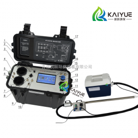 国标30B+安大略法烟气汞采样仪
