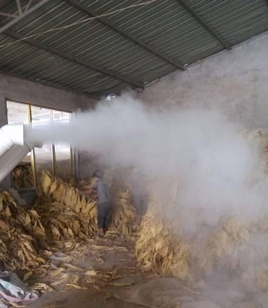 初烤烟叶回潮机