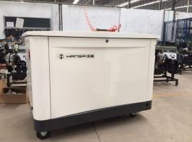 德国进口汽油20千瓦发电机-静音箱式发电机