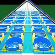 自建循环水养殖系统