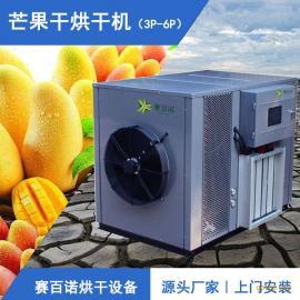 东南亚芒果干专用烘干机 烘干成本低 安全系数高