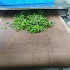 微波茶叶杀青机固色提香做出好茶叶