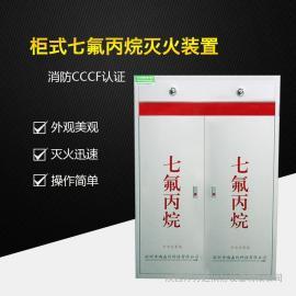 双柜式七氟丙烷灭火装置双瓶组70L不含药剂气体自动灭火设备