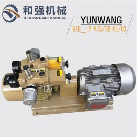 销售云望WZB25-P-VB-03无油泵 气泵 粒子成型风泵 折页机气泵