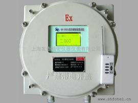 发泰天然气燃气煤气防爆露点FT-300Ex在线监测仪