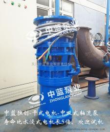 QZB中吸式潜水轴流泵高品质轴流泵
