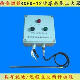 焦炉煤气放散点火防爆高能点火器RXFD-12 沼气点火器