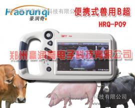 兽用B超换屏,动物B超维修换风扇,机械探头注油