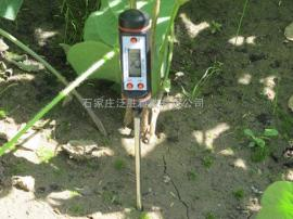 TP101泛胜针式土壤温度计